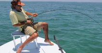An ultimate guide for fishing sharks easily!